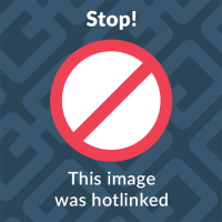 2 BICYCLES RACK